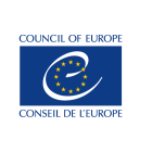 Finding a bigger voice for NGOs at the Council of Europe