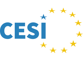 CESI: Digitalisation & future of work: Social protection for all?