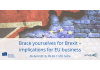 Brace yourselves for Brexit – implications for EU business