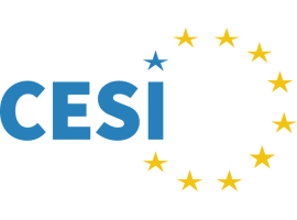 CESI: Summer Days-The Future of Work